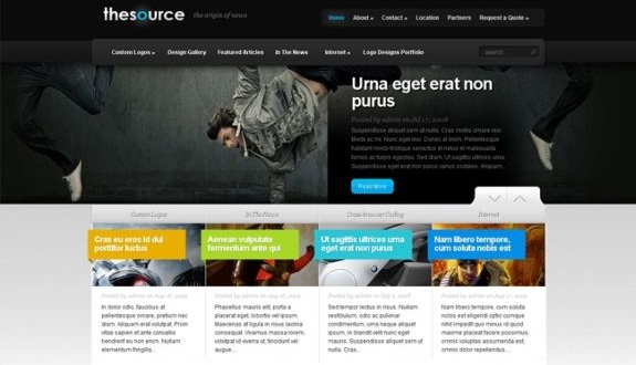 30 Premium Professional WordPress Themes