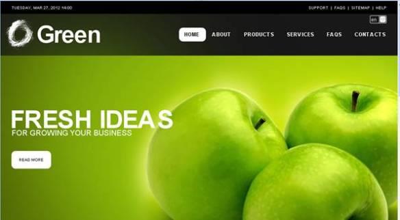 Green Business Turnkey Website 2.0