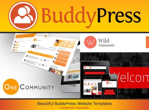 Beautiful BuddyPress Website Templates