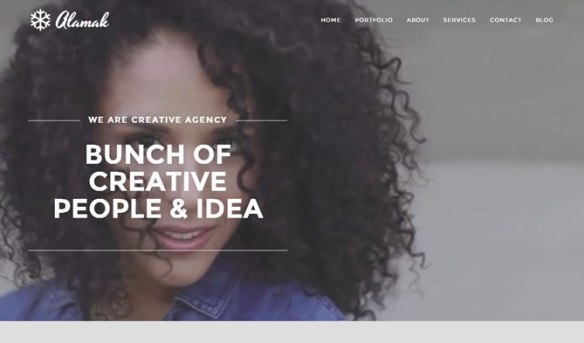 Alamak - Responsive One Page Portfolio Theme