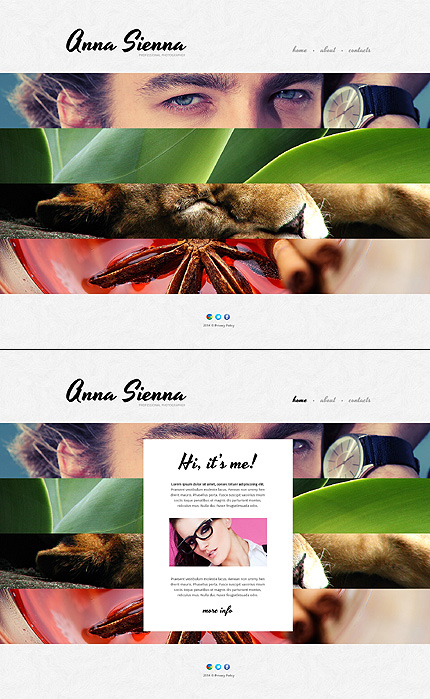 Template 48147 - Anna Sienna Website Template