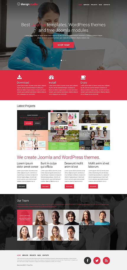 Template 52172 - Design Studio Responsive WordPress Theme with Slider, Parallax and Lazy Load and Zoom Effects