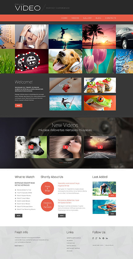 Template 53877 - Video Online Responsive WordPress Theme