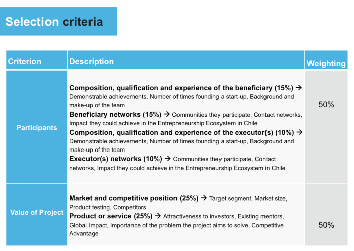 Start-Up Chile selection criteria