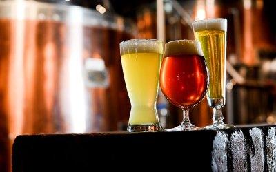 Investimentos em cervejarias artesanais: uma tendência crescente