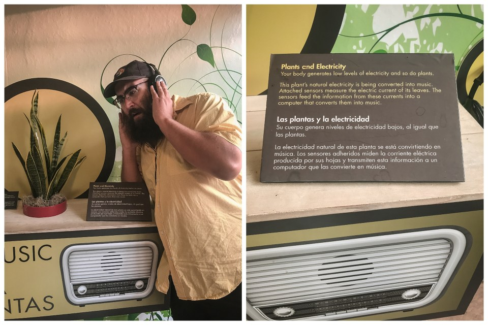 summer vacation denver colorado denver botanic gardens plant music display
