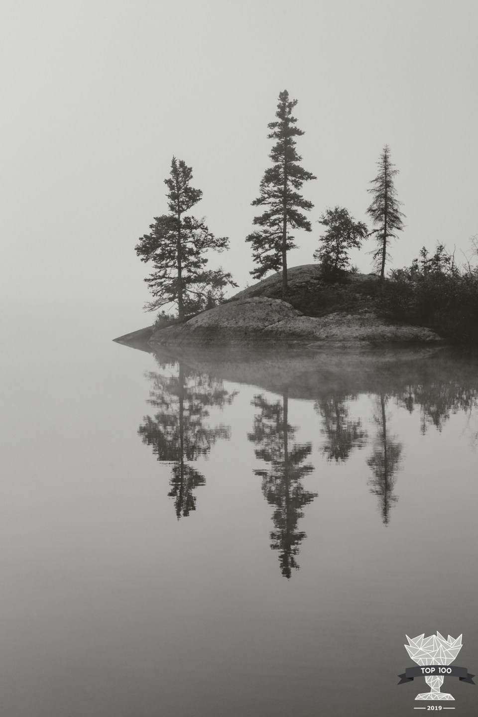 shoot and share contest top 100 photograph of reflection of four trees on the water, horizon obscured by fog, water is still as glass