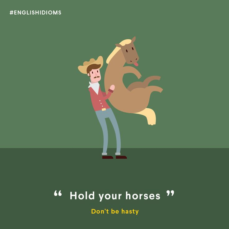 hold your horses english expression