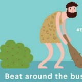 beat around the bush english expression
