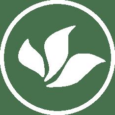 Le blog du Maître de thé Madame MO