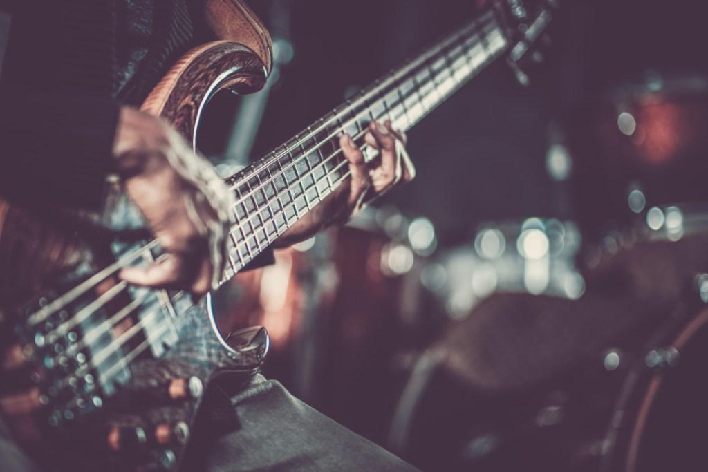 professional guitarist