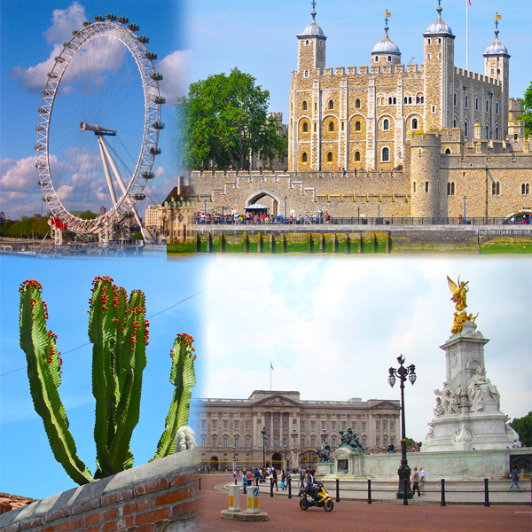 Top Summer Attractions in London