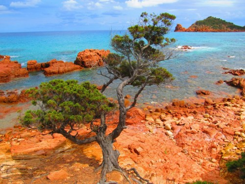 Zomerbestemmingen: Sardinië
