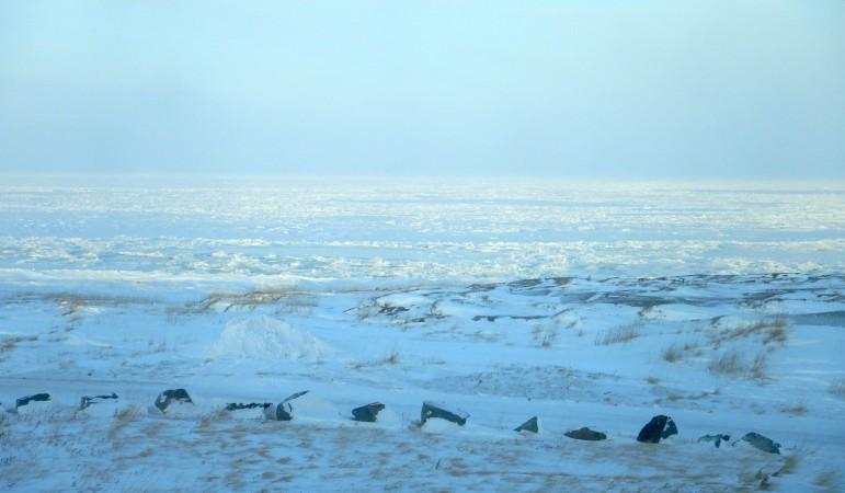 10 Hudson Bay seen from Churchill community center_11162018_2