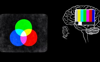 how do we see in color? TED-Ed