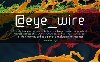eyewire a game to map the brain