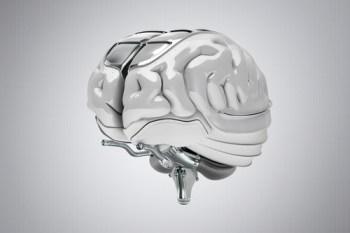 concept brain art, © Viaframe/Corbis