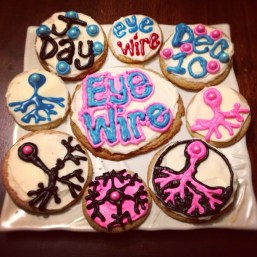 neuron cookies, neuroscience cookies