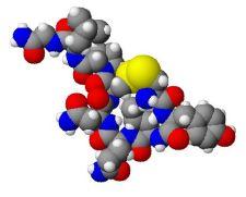 Oxytocin, Physorg