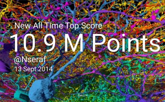 Nseraf EyeWire Top Score All Time