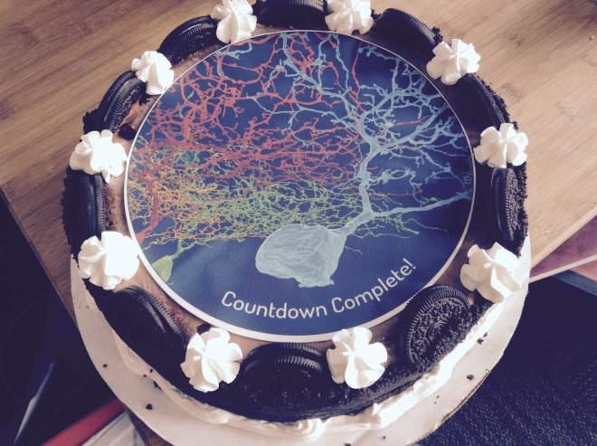 eyewire, citizen science, countdown cake, neuron cake, neuron, art, eyewire cake, brain cake