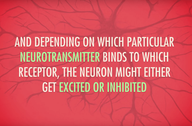 neurotransmitters, crash course