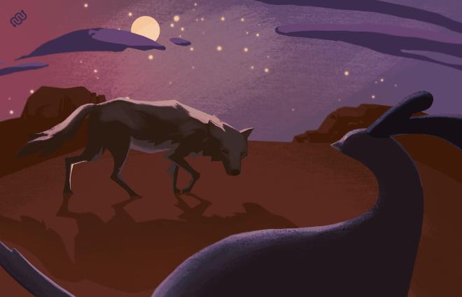 coyote, roadrunner, art, night, vs