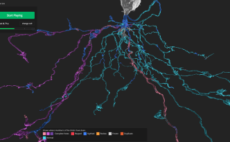 heatmap, eyewire, citizen science, neuroscience, scythe, scout, mystic, neo brain game, neurons, brain, neuroscience