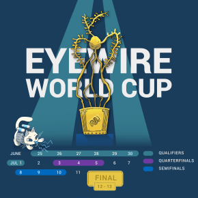 eyewire cup, soccer, football, competition, eyewire cup, citizen science, 2018 eyewire, sciart, cit sci, science design, eyewire games