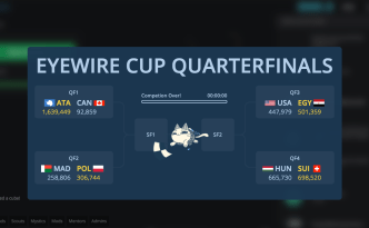 eyewire cup, soccer, football, competition, citizen science, neuroscience, neurons, seung lab, daniela gamba, for science, citizen science, nurro