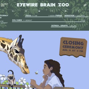 Eyewire Brain Zoo, Zoo Brains, eyewire, citizen science, animal brains