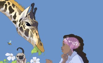 brain zoo, animals, science, giraffe, brains, fun, competitino