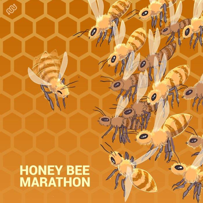 honey bee, bees, marathon