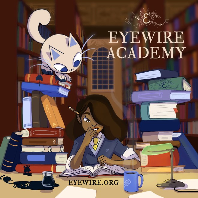 eyewire academy, back to school, eyewire, competition, fun, major competition, events