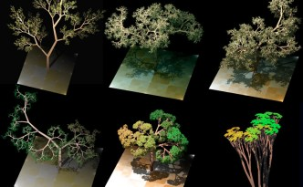 fractal trees, public domain, Eyewire, citizen science, fractal geometry, computer generated fractal