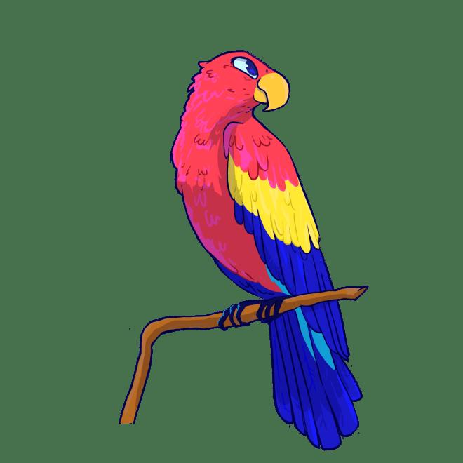amacrine adventure, parrot, pirate, treasure, fun, science