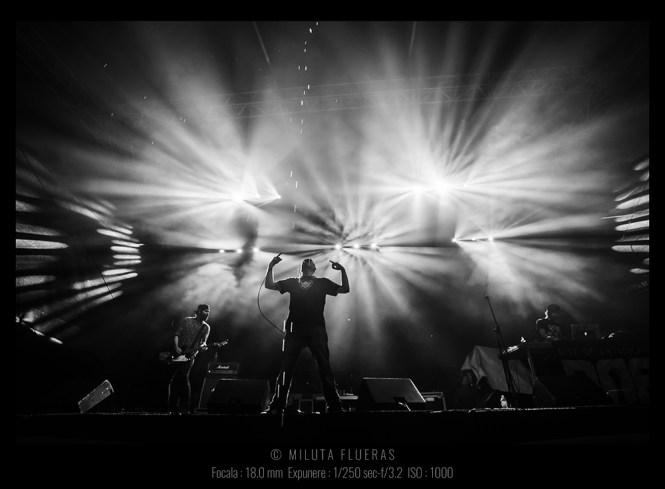 fotografia de concert