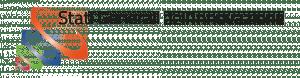 logo_SGI3