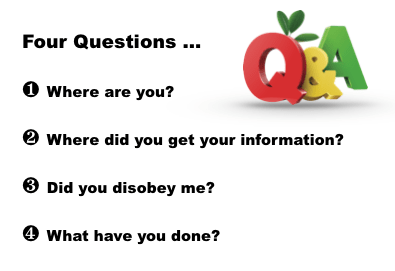 Q and A four questions