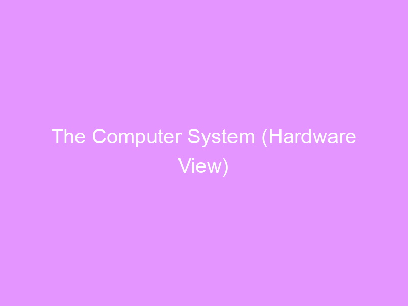 The Computer System (Hardware View)