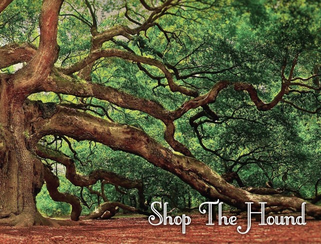 Tree with Shop the Hound wording