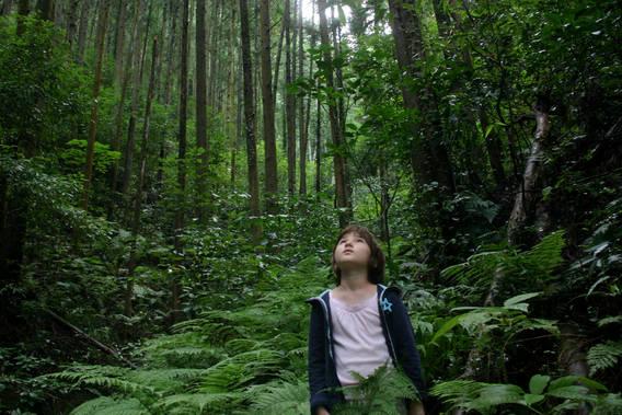 Resultado de imagen de imagenes de enamorados paseando por el bosque