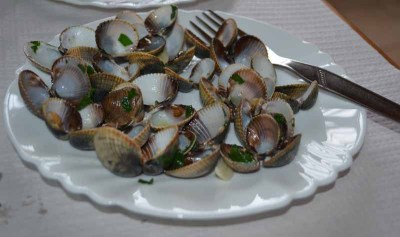 Portugal04_Fresh_Clams
