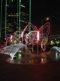 butterfly light display Dallas 12-4-2013-02