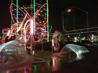 butterfly light display Dallas 12-4-2013-04