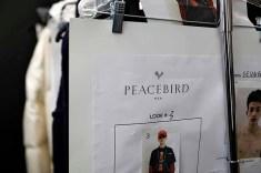 Peacebird Fall 2019
