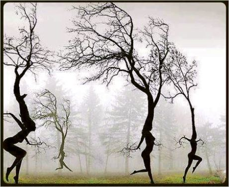 Eco-feminism — Prancing trees?