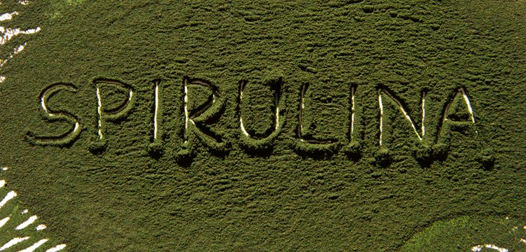 Spirulina can be bad for you. Learn why and how to avoid the danger