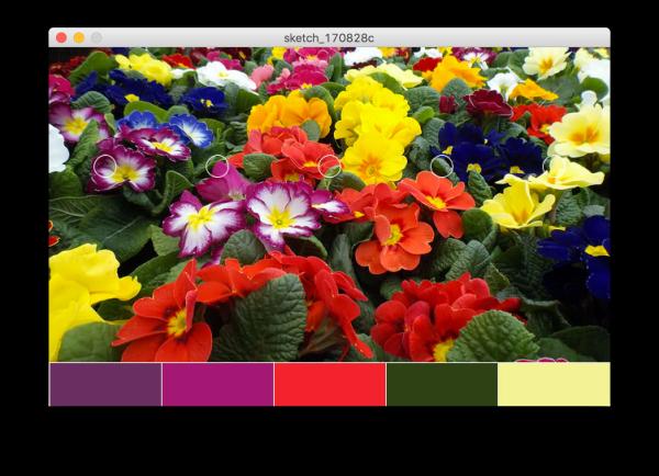 Palette di colori da immagine