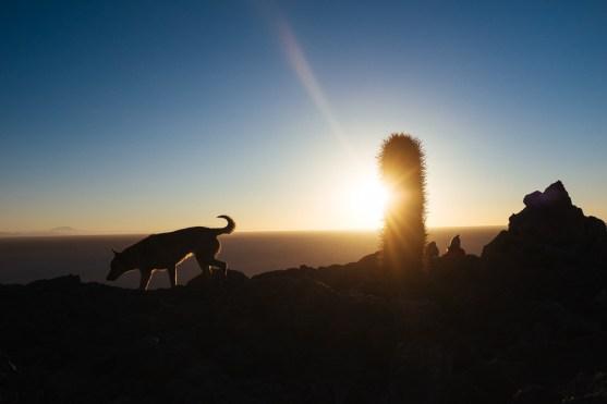 Sonnenaufgang in der Salar